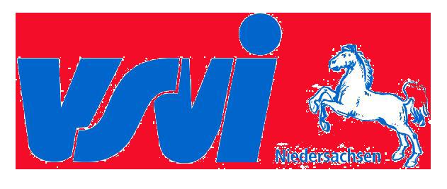 VSVI Logo